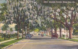 Florida Mount Dora Donnelly Avenue