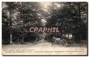 Old Postcard Foret Senart Crossroads Way to Cows Contravention A Gendarme