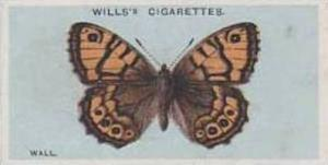 Wills Vintage Cigarette Card British Butterflies No. 41 Wall 1927