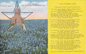 State Capitol, Blue Bonnets, The Texas State Flower, Texas, 1930-1940s