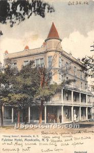 Palatine Hotel Monticello NY Postal used unknown