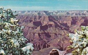 Arizona Grand Canyon National Park