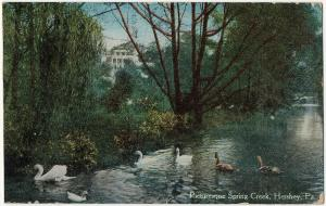 1921 Hershey PA Picturesque Spring Creek Swans Dauphin County RARE DB Postcard