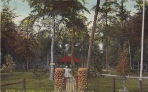 W. C. Cornwell Lodge near Clare, Michigan, PU-1911
