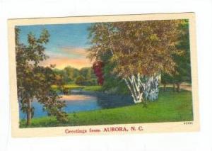 Greetings from Aurora, North Carolina,PU-30-40s