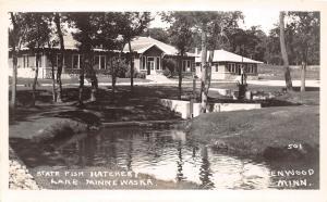 D93/ Glenwood Minnesota Mn Real Photo RPPC Postcard c1940s State Fish Hatchery