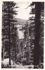 RP, Trees, BIG BEAR LAKE, California, 1930-1940s