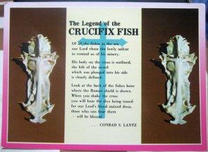 United States Florida Skeleton Sail Cat the Crucifix Fish - unposted