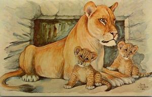 Wisconsin Madison Lioness With Cubs By Jens von Sivers At Henry Vilas Park Zoo