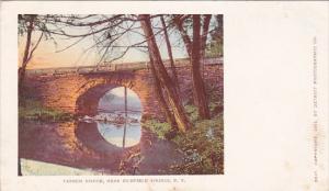 Farnum Bridge Richfield Springs New York
