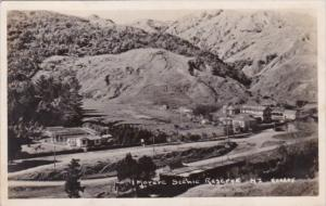 Morere Springs Scenic Reserve North Island New Zealand Real Photo