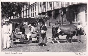 RP: Carro de bois - MADEIRA , Portugal , 20-40s