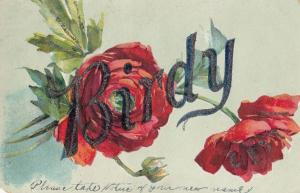 A Name Called Birdy With Flowers Greetings Old Postcard