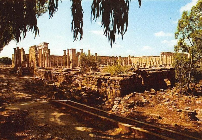Libyan Arab Jamahiriya Cyrene General view of the Roman Forum