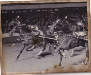 RP; WESTBURY, New York, Kool King Wins Over Manotick Dandy, Roosevelt Raceway...