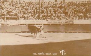 Mexico Juarez Bull Fight Real Photo