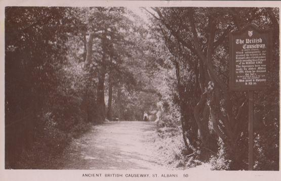 Depression Sign at Ancient British Causeway St Albans Real Photo Postcard