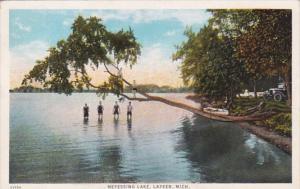 Michigan Lapeer Scene On Nepessing Lake