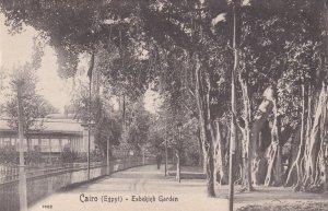 EGYPT , 00-10s ; Cairo ; Esbekieh Garden