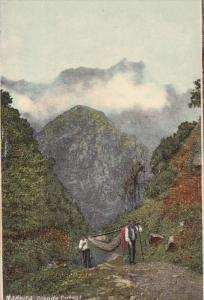 MADEIRA , Funchal , Portugal , 00-10s ; Grande Curral
