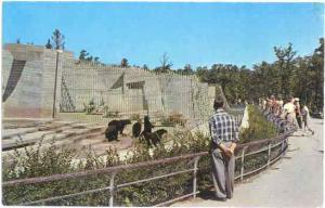 Bear Cages, Assinboine Park, Winnipeg, Manitoba, Canada, pre-zip code Chrome