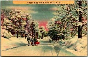 PINE HILL New York Postcard Greetings Horse Sled / Winter Scene Linen c1940s