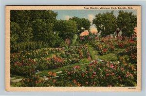Lincoln NE, Rose Garden, Antelope Park, Nebraska Linen Postcard