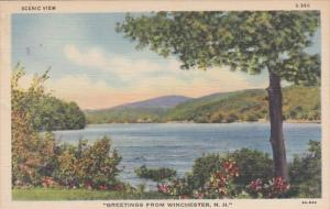 New Hampshire Greetings From Winchester Curteich