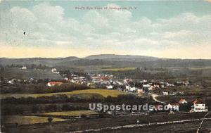 Birds Eye View Hurleyville NY 1911