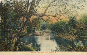 Little Falls New York~Spruce Creek~Rocky Ledge Bank~1908 Postcard