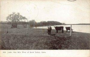 LPS76 ROCK VALLEY Iowa Lake Cow Pasture Postcard