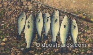 Ozarks, USA Fishing 1950