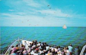 Aboard Daily Cruise From Hyannis To Martha's Vineyard Massachusetts