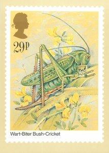 British stamp on Postcard Insects Wart-Biter Bush-Cricket by Gordon Beningfield