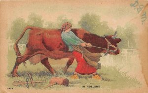 In Holland Cow 1910 liquid stains on card, wont' lay flat