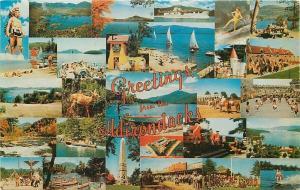 Adirondacks New York~Greetings~Multiple Scenes~1950s Postcard