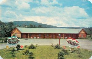 Mountainhome Pennsylvania~Wilmer Vogt's Guest House~Log Cabin Motel~1950s PC