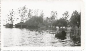 Real Photograph of flooded Town 1950's Overflowing Lake Vintage Photograph