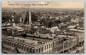 Napoleon Ohio~Birdseye of Rooftops~Arnold Hardware~Neighborhoods~1909 Postcard