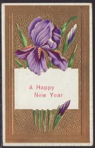 A Happy New Year,Iris