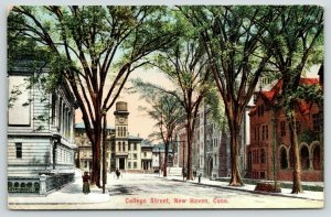New Haven Connecticut~College Street~Beautiful Buildings~1909 Postcard