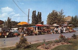 Chautauqua New York~Farmers Market From Car Trunks & Tables~1950s Ladies~PC