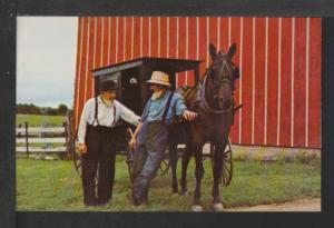 Greetings From Rockome Gardens,Arcola,IL Amish Postcard