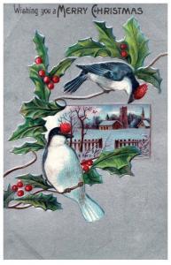 Christmas , Bluebirds , Bird
