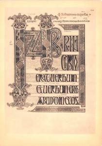 Gospels in Latin -
