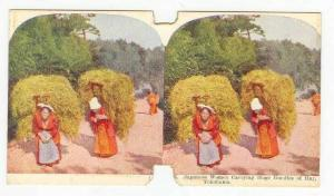 SV: Japanese Women Carrying Huge Bundles Of Hay, Yokohama, Japan, 1890s