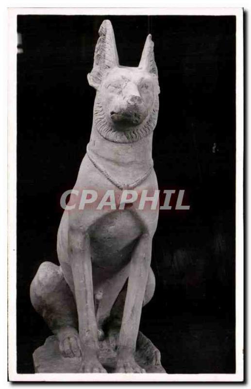 Old Postcard Dog Limestone Traces Of Polychromie Primitive Dynasty Egypt Egypt
