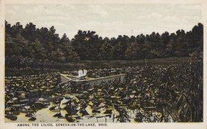 GENEVA ON THE LAKE, Ohio, PU-1934; Among The Lilies
