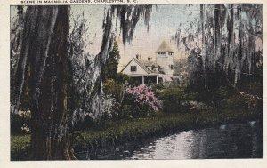 CHARLESTON, South Carolina, 1900-1910s; Scene In Magnolia Gardens