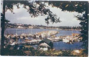 Seattle Yacht Harbor Washington WA